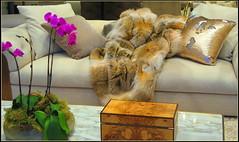 Living room Decor (> Pinoy) Tags: decoration decor decorum living room luxery style fashion decorating furs sofa class tan colors brown canon canonpowershot canonphotography canada canadian interiordecorating ladybot
