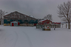 Barn, winter scene going to St Jacob's b-3 (Ran Valentine) Tags: winterscene barn