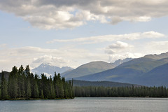 Jasper National Park, Canada (leo_li's Photography) Tags: parcnationaljasper jaspernationalpark alberta canada 加拿大 亞伯達省 canadianrockymountains rockymountains 洛磯山脈 亞伯達 艾伯塔省 艾伯塔