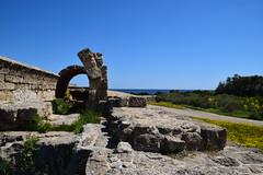 DSC_0250 (mark.greefhorst) Tags: cyprus northerncyprus salamis ancientworld roman