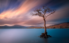The Tree Of Life (Adam West Photography) Tags: 15stop adamwest art clouds fine haida lake landscape lee loch lomond long nature oak scotland skies sunset timelapse tree trossachs uk exposure goldcollection