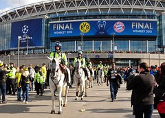 Champions League Final 2013 Wembley Stadium (standhisround) Tags: uk horses people london germany football stadium crowd police final fans championsleague equine supporters greys wembley mountedpolice wembleystadium bayernmunich borussiadortmund cupfinal metropolitanpolice 2013