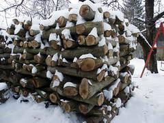IMGP0285 (Peti0061) Tags: wood winter snow hungary snowy woodpile magyarország farakás winter2010 vasmegye tűzifa peti0061 nagygeresd