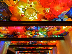 5--Chihuly exhibit - glass ceiling (hpwiggy) Tags: glassworks dalechihuly seattlecenter seattlewashington chihulygardenandglass