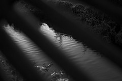 (YOUANDMEORUS) Tags: blackandwhite bw monochrome japan tokyo blackwhite 400 日本 東京 モノクロ 白黒 spiritofphotography