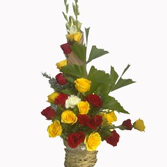flowers bangalore winni.in (sujeetmishra2007) Tags: flower bangalore gifts online delivery bouquets winniin