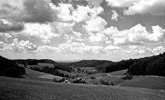 img745 (Marcello A. M. Galvao) Tags: leica bw film germany deutschland iso400 freiburg schwarzwald screwmount leitz iiic leicaiiic