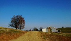 Kentucky farmroad and barn [Explored] (Laurkat9) Tags: road november blue autumn sky moon tree metal barn rural countryside rust peace farm kentucky horizon joy rusty here contemplative 2012 halfmoon onetree gethsemani daymoon explored