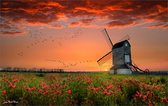 Windbreaker (Jean-Michel Priaux) Tags: pink flowers sunset red sky flower mill nature sunshine fairytale photoshop landscape poppies paysage grinder windbreaker quern priaux mygearandme vision:sunset=0982
