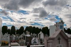 Cementiri Punta Arenas (faltimiras) Tags: chile city patagonia cementerio ciudad punta arenas ciutat cementiri xile