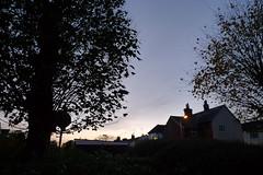 Last Light (cycle.nut66) Tags: leica blue autumn trees houses light sky silhouette last lumix panasonic summicron late lx3
