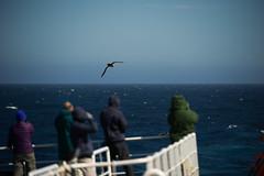 _D3S7450 (Silentmind8) Tags: ocean trip travel cruise joseph boat photo ship south antarctica os pole safari van antarctic safaris