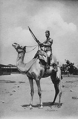 02_Egypt - Camel Mounted Soldier (usbpanasonic) Tags: soldier army muslim islam egypt culture nile cairo nil camels egypte islamic مصر caire moslem egyptians egyptiens islamicsoldier