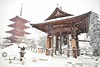 Pagoda.....*****Over 3 million visits*****... Thank you so much. © Glenn E Waters. Japan 2014. Over 5,000 visits to this photo. (Glenn Waters ぐれんin Japan.) Tags: winter snow beautiful japan japanese pagoda nikon bell aomori getty 日本 hirosaki 雪 冬 japon d800 雪国 五重塔 弘前 青森県 鈴 ニコン nikond800 ぐれん glennwaters ウォータースぐれん 3millionvisits
