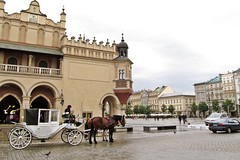 do you want to ride? (green_lover (your COMMENTS are welcome!)) Tags: cracow kraków poland oldtown square sukiennice carriage horses architecture buildings history unesco trip city