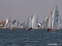 2014 IPANSharpie (124) (Paulo Silveirinha) Tags: portugal water boats sailing barcos sharpie riadeaveiro costanova ragattas