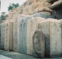 + (Nisa Yeh) Tags: 6x6 japan 120film kobe sqaure  pentaconsixtl fujifilmpro400h shinkoji 80mmf28mcbiometar hyogotsunomichi