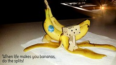 When life makes you bananas do the splits! (karmenbizet73) Tags: life art toys photography flickr toystory banana splits eyespy danbo 196365 danboard photodevelopment danbolove toysunderthebed 2015365photos