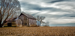 Rustic Barn (Explored) (Kerry Wright2013) Tags: rusty barn field illinois omdem5markii