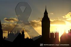 oh my London... ! <3 (photos4dreams) Tags: london22016p4d london city gb england britain photos4dreams p4d photos4dreamz susannahvvergau sightseeing stadt tour vacation february 2016 februar greatbritain terrorist incident attack westminster housesofparliament