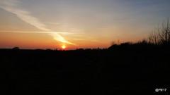 Sunset over #hwcp. (postman.pete) Tags: wickedweasel hwcp bird black bonfire catkin chaffinch duck goldfinch great lumix male mallard red river robin sunset tit tree water winter wren over