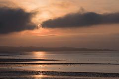 Sunset, Udale Bay, Black Isle (Karen Thorburn Photography) Tags: blackisle udalebay sunset dawn highlands balblair cromarty firth scotland landscape outdoor sun water clouds moon birds bay sky coast sea