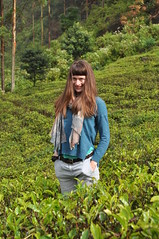 Lost in Tea (sbrizio) Tags: sri lanka honeymoon 2016 2017 dasha