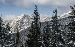 Mountains (matheustramontini) Tags: mountain montanha snow neve tree arvores landscape paisagem canada vancouver britishcolombia messagetobears cold frio winter inverno