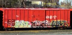 win - sicr - gyser (timetomakethepasta) Tags: win fu sicr gyser moms tfl hinge gaunt globe ktc um freight train graffiti art boxcar bkty benching selkirk new york photography