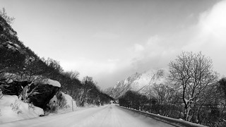 the road that lies ahead ...