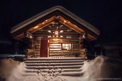 IMG_2216 (F@bione©) Tags: lapponia lapland marzo 2017 husky aurora boreale northenlight circolo polare artico rovagnemi finalndia finland