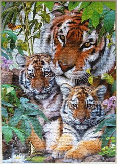 Tigerfamilie (Howard Robinson)