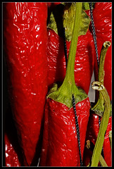 Hanging red chili peppers ((Imagine) 2.0) Tags: nikond3300 test 2017 nikkordx1855mmf3556 stilllife closeup edible macro
