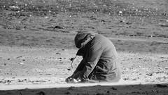 How Scottish people sunbathe (byronv2) Tags: edinburgh edimbourg rnbforth river riverforth sea northsea candid peoplewatching street sitting beach hood jacket sunny sunlight sunshine sand portobello coast coastal firthofforth forth people sit seated