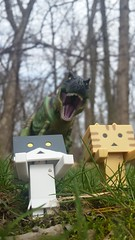Some of my toys don't get along... (brooke.fallow) Tags: kitty danboard toy photography trex tyrannosaurus rex
