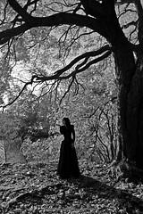 Niina (AV art) Tags: fall autumn leaves october finland girl young woman alternative model ruska syksy syksyn lehdet lokakuu suomi tyttö nuori nainen malli blackandwhite bw monochrome greyscale
