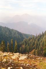 (obnimakina) Tags: film 2016 pakistan himalayas paye khyberpakhtunkhwaprovince mountains hills landscape outdoor forest trees snowpeak makrapeak shogran siripaye