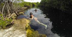 Tulum Casa Cenote aqua water mangroves-3-2