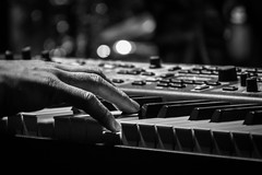 Keys (tim.perdue) Tags: keys keyboard synthesizer piano musical instrument popgun band ensemble group pop rock music musician performance concert live closeup detail hand fingers lights bokeh dof black white bw monochrome king avenue 5 bar nightclub grandview heights ohio columbus nikon d5500 18140mm nikkor