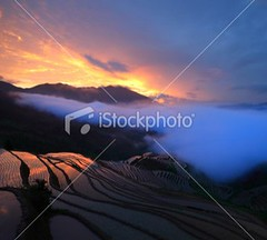 Longji Terraces (MPBHAIBO) Tags: china morning travel summer cloud mist mountain wet beautiful beauty rain fog forest sunrise outdoors gold dawn spring asia rice guilin farm glowing agriculture idyllic cloudscape ricepaddy scenics longsheng tranquilscene chineseculture longji sunglow urbanscene famousplace ruralscene beautyinnature terracedfield chineseethnicity longjiterracedfield guangxiregion longjitetian