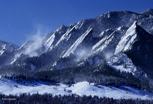 Photo - Windy winter day at Chautauqua Meadow.