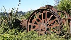 Steam tractor wreck, Duck Creek (Vendin) Tags: newzealand public waikato northisland wreck aotearoa coromandel duckcreek