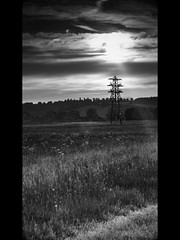 Rcolte (Aaron Pack (100,000+ views Thank You x)) Tags: trees sunset bw field grass clouds landscape energy horizon harvest pylon fields