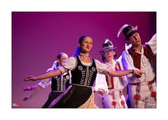 Festival du Houblon 2013 (Emmanuel VIVERGE) Tags: france festival folklore fete alsace monde lieux haguenau slovaquie chemlon fteduhoublon ef70200mmf28lisiiusm canoneos1dx festivalduhoublon fdh2013