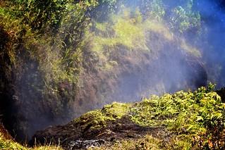 Steam vent, Volcanos National Park