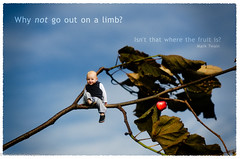 Whimsical (ReanimatedImagery) Tags: sky baby apple photography whimsy nikon toddler branch risk quote text son 52 marktwain motivational d7000