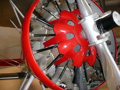 """Boeing P-12E (11) • <a style=""""font-size:0.8em;"""" href=""""http://www.flickr.com/photos/81723459@N04/9890995316/"""" target=""""_blank"""">View on Flickr</a>"""