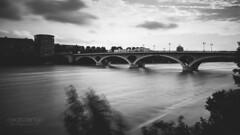 Pont des Catalans (Cedpics) Tags: bridge bw france river pont toulouse garonne fleuve pontdescatalans thephotographyblog