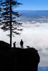 (Svein Nordrum) Tags: light shadow people cliff dog mist tree silhouette rock vertical clouds dark looking view explore height steep overview bsquare explored steinsfjorden mrkgonga