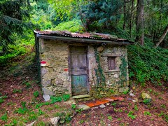 the house in the woods (explored) (lotti roberto) Tags: wood house tuscany foresta bosco apuane toscana leica dlux6 mygearandme mygearandmepremium mygearandmebronze mygearandmesilver mygearandmegold mygearandmeplatinum mygearandmediamond fav25 fav50 fav75 fav100 fav125 fav150 fav175 fav200 fav225
